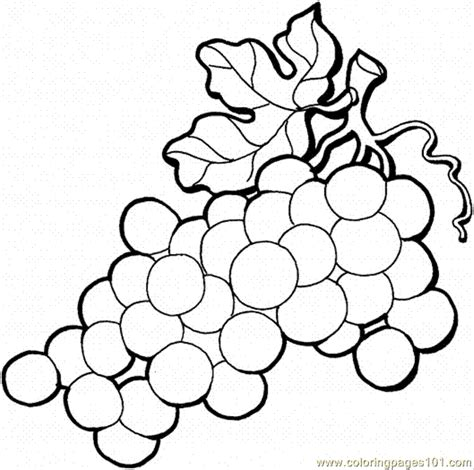coloring pages grape 4 food fruits gt grapes free