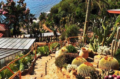 giardini esotici piante grasse tour nei giardini esotici casafacile