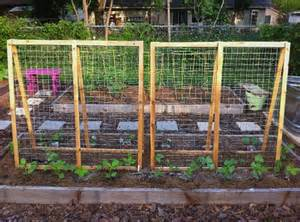 how to build a pole bean trellis summer squash trellis the trellises turned out so lovely