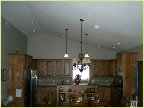 Lighting For Vaulted Ceiling by Pin Vaulted Ceiling For Plants On