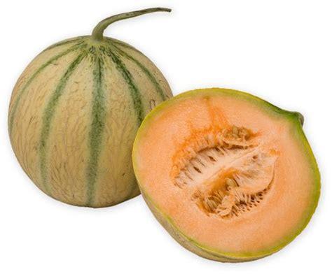 buy musk melon 1piece online shopping bangalore store