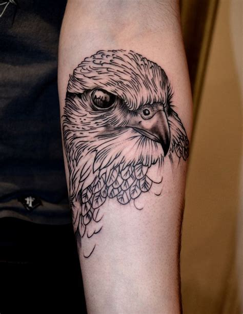 hawk tattoo pinterest 37 best falcon head tattoo drawings images on pinterest
