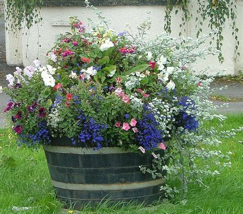 26 best images about whiskey barrel planters on pinterest