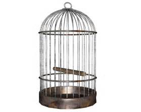 the bird cage a redemption story daily dew devotional