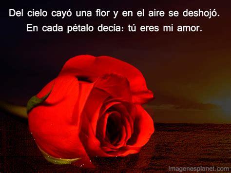 imagenes de rosas romanticas con frases imagenes con frases hermosas con movimiento imagui