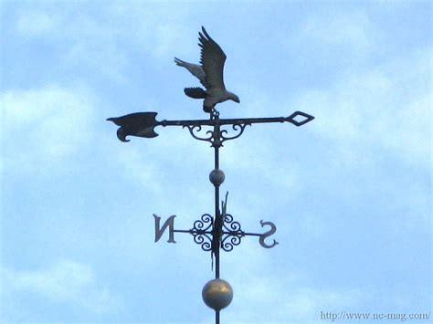 A Weather Vane A Simple Story About Weather Vanes Nature Center Magazine