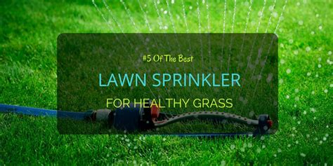 best lawn sprinklers 5 of the best lawn sprinkler for healthy grass