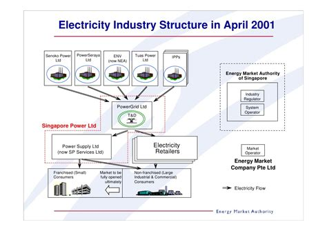 power system operations and electricity markets electric power engineering series books singapores electricity market after market reform