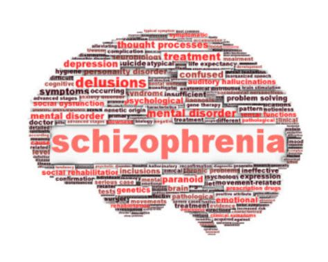 beyond schizophrenia living and working with a serious mental illness books how to treat schizophrenia soul