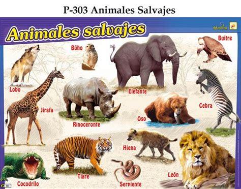 imagenes animales peligrosos animales salvajes tipo de animales