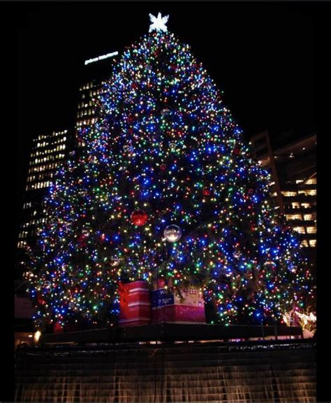 how to check tree lights how to check tree lights 28 images now is the time to