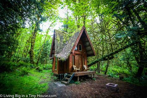 this enchanting cabin in the forest will leave you