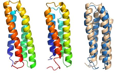 cell membrane proteins give   secrets