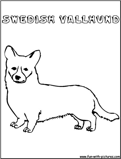 swedish fish coloring page swedishvallhund coloring page