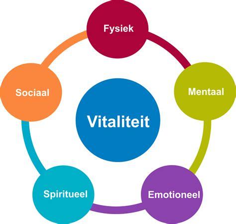 meer vitaliteit home welzijn meervitaliteit vitaliteit koerscoaching