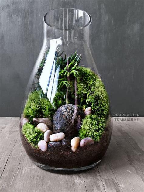 carafe moss terrarium gift set live houseplants by doodlebirdie terrariums and miniature