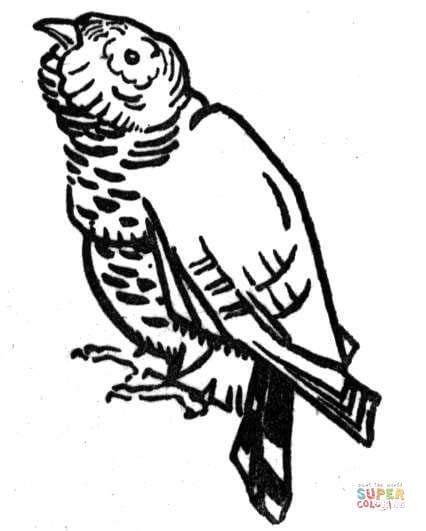 Cuckoo Loca Coloring Page Free Pages