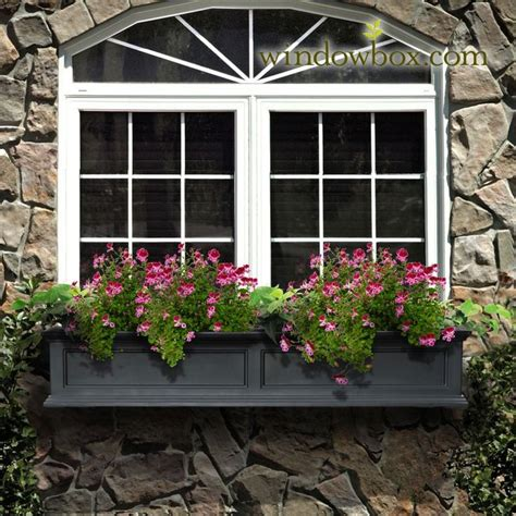 window box planters 129 best window boxes images on window boxes backyard ideas and flower boxes