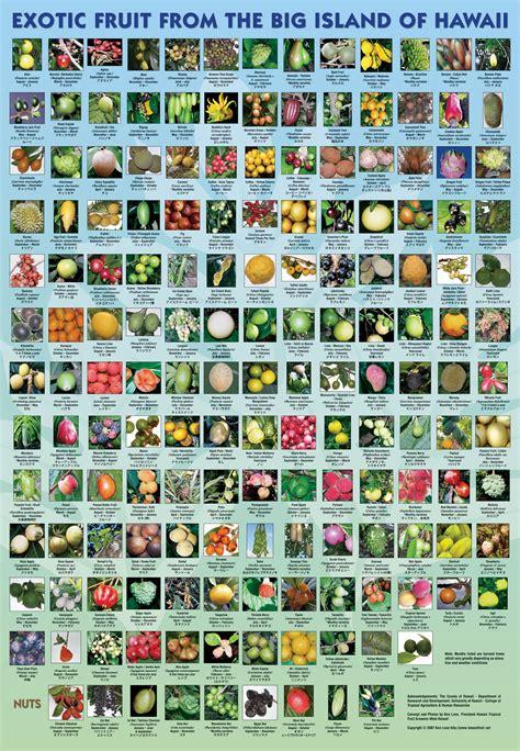tropical names fruits of hawaii