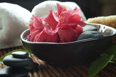 lotus wellness lotus wellness samvahana