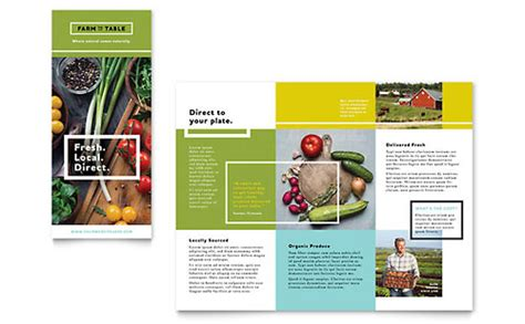 Free Tri Fold Brochure Template Word Publisher Microsoft Publisher Tri Fold Brochure Templates Free