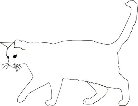 trapdoor spider coloring page wild cat colouring page free printable