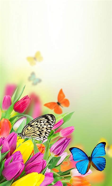 hd apps for android free butterfly wallpaper hd for android apk for