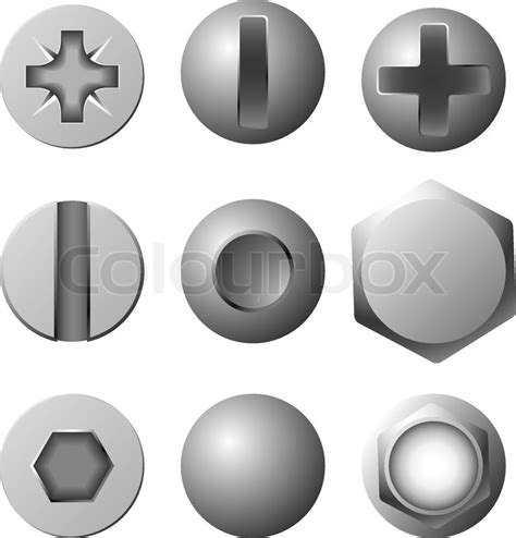 vector set of screws bolts and rivets isolated on white
