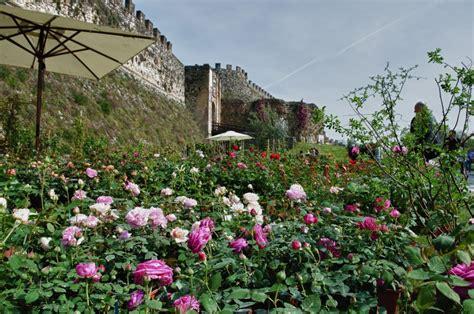 giardino dei libri rimini rimini giardini d autore classtravel