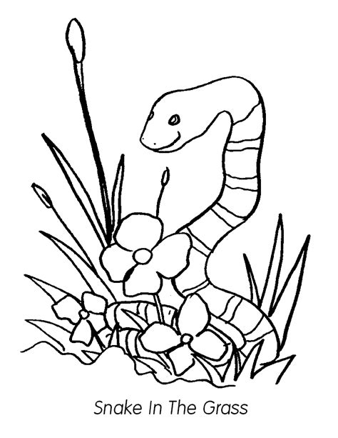 free coloring pages grass free coloring pages of grass for