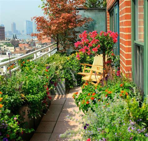 Pflanzen Balkon Winterhart by Winterharte Balkonpflanzen Pflanzarten Und Pflege Tipps