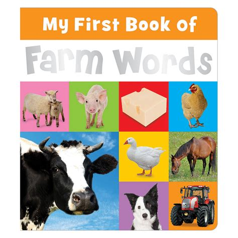 a first book of my first book of farm words make believe ideas uk