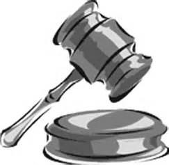 avvocati pavia albo avvocato veruscha glenda polara