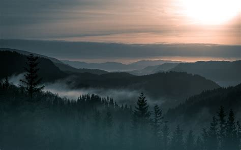 wallpaper en 4k wallpaper mountains norway fog forest 4k nature 4900