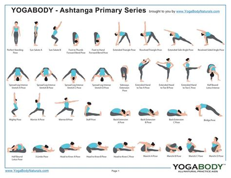 best 25 poses chart ideas on chart
