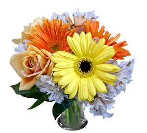 flower images png format images of flowers www imgkid com the image