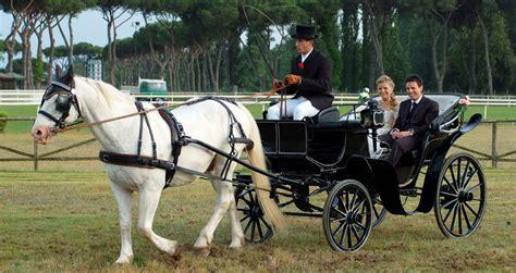 cavalli da carrozza dalla carrozza all aereo i piemontesi e i mezzi di