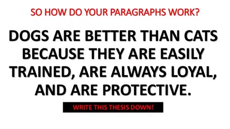 why are better persuasive essay dogs or cats pdfeports867 web fc2