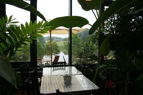 glass house winery from greenhouse view to river picture of glass house winery free union tripadvisor