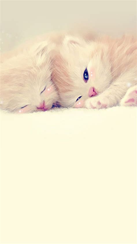 cute themes for iphone 6 plus cute background for iphone 6 impremedia net