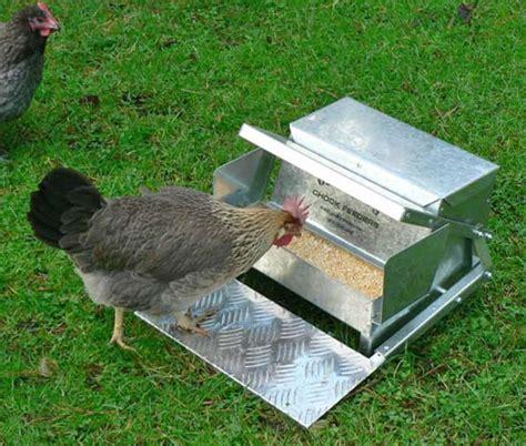 Hen Feeder s feeders new chicken feeder saves feed