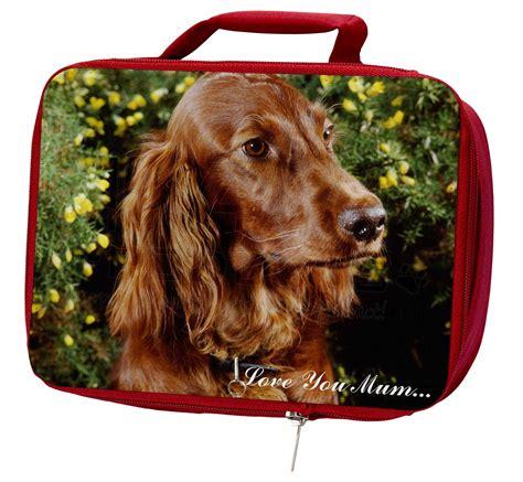 irish setter dog accessories irish red setter dog love you mum insulated red school
