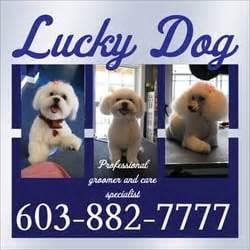 lucky grooming lucky grooming salon nashua nh