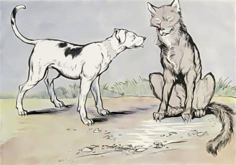 The Dog And The Wolf Fables Of Aesop