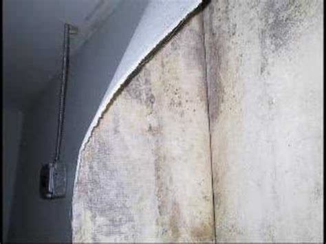 Can Mold In Shower Make You Sick by Hotel Motel Mold Can Make You Sick