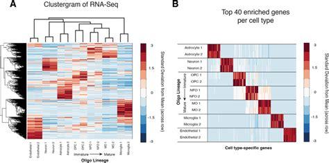 flux capacitor rna seq flux capacitor rna seq 28 images brain rna seq an rna sequencing transcriptome and splicing