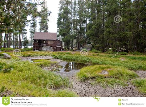 Wrights Lake Cabin Rental by Wooden Cabin In Forest Stock Image Image 7596071