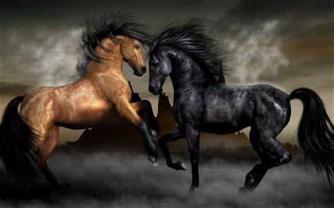 Schöne Große Bilder by Die 80 Besten Sch 246 Ne Pferde Hintergrundbilder
