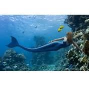 Pictures Girl Mermaid Sea Fish Fantasy Wallpapers Car
