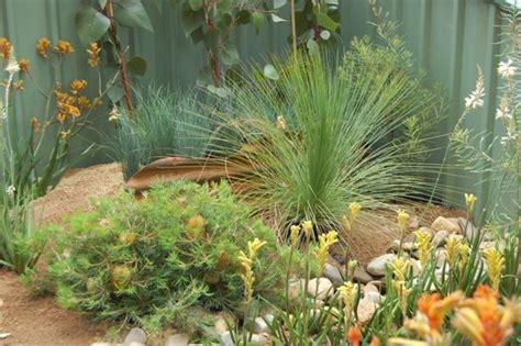 western australia australian native plants nursery australian native garden design ideas australian outdoor